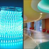 Doppio Line/22-24lm della striscia di 5050 RGB LED con 2 anni di Warranty/110V/220V