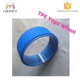 Rueda azul de la yoga de la TPE del color del rodillo de la espuma del producto del ejercicio con el tubo del ABS