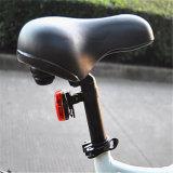 Bicicleta elétrica do pneu gordo com o pedal ajudado (RSEB-508)