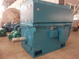 Воздух-Вода серии 6kv/10kvyks охлаждая высоковольтный трехфазный мотор AC Yks6301-12-450kw