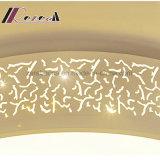Wohn-LED Deckenleuchte des neuen Entwurfs-für Badroom
