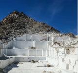 대리석, 석회화 및 석회석의 채석장을%s 강화되는 봄을%s 가진 11.5mm/11mm/10.5mm 직경 다이아몬드 철사