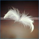 Перо гусыни или утки высокого качества для ветрила
