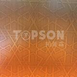Feuille d'acier inoxydable de Decoravie pour l'ascenseur avec la couleur gravure du miroir 8k