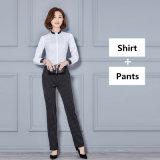Новая одежда износа повелительницы конторской работы способа