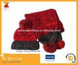 Установленные женщины зимы 2 частям шарфа жаккарда