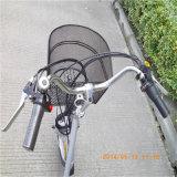 triciclo elétrico Trike da carga de 36V 250W para o homem idoso