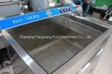 Wasc-10 Machine à laver aux fruits et légumes, laveuse désinfectante à l'ozone commercial