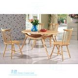 Cadeira de jantar de madeira moderna para o café do restaurante (HW-828C)