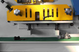 Machine combinée hydraulique de poinçonnage et de cisaillement