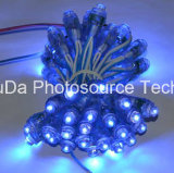 Impermeable todo color LED pixel luz 12 mm F8 DC5V LED píxel