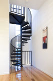 Escalera de acero moderna de la escalera espiral con la escalera del pasamano del acero inoxidable