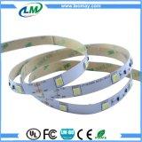 indicatore luminoso di striscia flessibile del nastro costante LED della corrente LED di 7.2W SMD5050