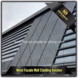 Comitato di parete decorativo esterno di alluminio perforato del rivestimento della facciata