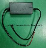 12V 3A Aufladeeinheit für Lead-Acid Batterie mit blank Drähten