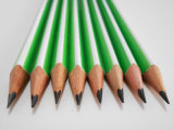 Lápiz del estudiante del lápiz de la Hb del lápiz