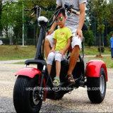 二重シートが付いている1000W 3車輪の電気Motoryスクーター