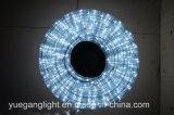 Ce et lumière approuvée de corde de RoHS 10m 24LED/M pour l'usage extérieur