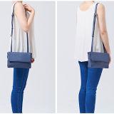 Hb2220. Bolsas do saco de ombro do saco do desenhador do saco das mulheres da bolsa da forma da bolsa de senhoras de saco do plutônio