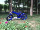 gros pneu 500W pliant la bicyclette électrique Rseb507 de croiseur de plage