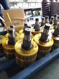 3 단계 380V 60Hz 1 톤 구리 모터 건축 호이스트
