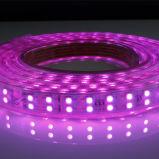 심천 더 나은 5050SMD RGB 2중 선 LED 지구 25/50m/Roll/120LEDs Ce/RoHS