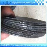 Corrosie-zichverzettende de tegen Schijf van de Filter van het Roestvrij staal