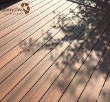 Decking al aire libre vendedor caliente del estilo WPC del surtidor de China nuevo para el jardín