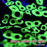 Inchiostro fluorescente al neon di sublimazione della tintura di diffusione giallo/fucsina per Epson F6070 Dx5/Dx7/5113