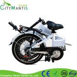 Geschwindigkeits-Berg Ebike des Rahmen-20inch elektrischer des Fahrrad-6