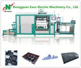 Volles automatisches Plastikbiskuit-/Schokoladen-/Plätzchen-/Nahrungsmitteltellersegment-Blasen-Vakuum, das Maschine bildet