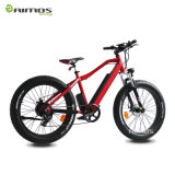 Bicicleta eléctrica gorda ocultada 750W caliente de Ebike del regulador de la venta 48V 500W con el pedal