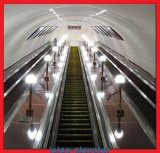 Gute Qualität und konkurrenzfähiger Preis für Innenrolltreppe