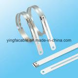 Laço metálico revestido de PVC em aço inoxidável revestido