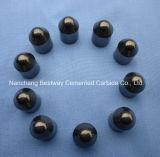 Piezas insertas de los botones del carburo de tungsteno Bk6/Bk8 para la industria de la perforación y de petróleo
