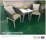 알루미늄 프레임 벨트에 의하여 길쌈되는 의자 및 탁자 정원 옥외 가구 (TG-6006)