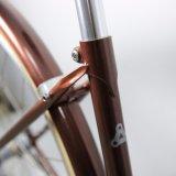 Bici de la ciudad de la alta calidad del nuevo producto 2017 (CTB20)