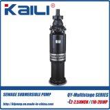 QY olie-Gevulde de mijnpomp Met duikvermogen van het Water van de Pomp 6Stage Schone Meertrappige) van de Pomp (