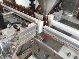 Máquina de rellenar en botella linear automática del polvo del plátano
