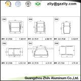 Protuberancia de aluminio/opinión seccionada transversalmente de los perfiles para la luz de la colada de la pared