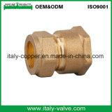 OEM & ODM Qualité Laiton Forgé Réduire le couplage de compression (AV7003)