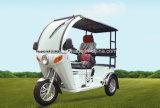 Motocyclette à trois roues handicapée 125 cc pour deux personnes