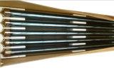 Géiser solar solar del calentador de agua caliente del tubo de vacío de la presión inferior del calentador de agua del panel con el tanque de agua solar auxiliar