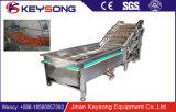 Plantaardige Wasmachine van de Sla van de Luchtbel van het Merk van Keysong van Jinnan De Blad