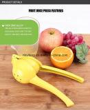 A cozinha da fábrica utiliza ferramentas o Juicer do limão