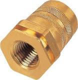 真鍮の磨かれたくだらない浴室の付属品か造られた鋼鉄付属品またはハードウェアまたはステンレス鋼の真鍮のナットまたはボルトまたはねじ
