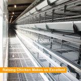 Type à plusieurs niveaux cage automatique de la vente chaude H de couche de ferme avicole