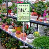 Estante de exhibición ajustable de la tienda de flor del jardín