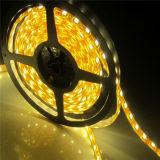 Flexible LED Matrix Digital-RGB Ws2812b 16*16