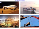 Transporte From China aos EUA, Reliable Shipping Service
